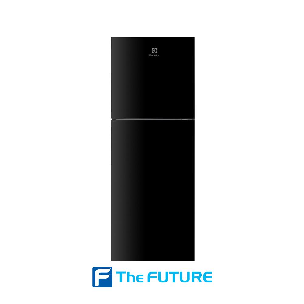 ตู้เย็น Electrolux รุ่น ETB2502H-H ที่ The Future