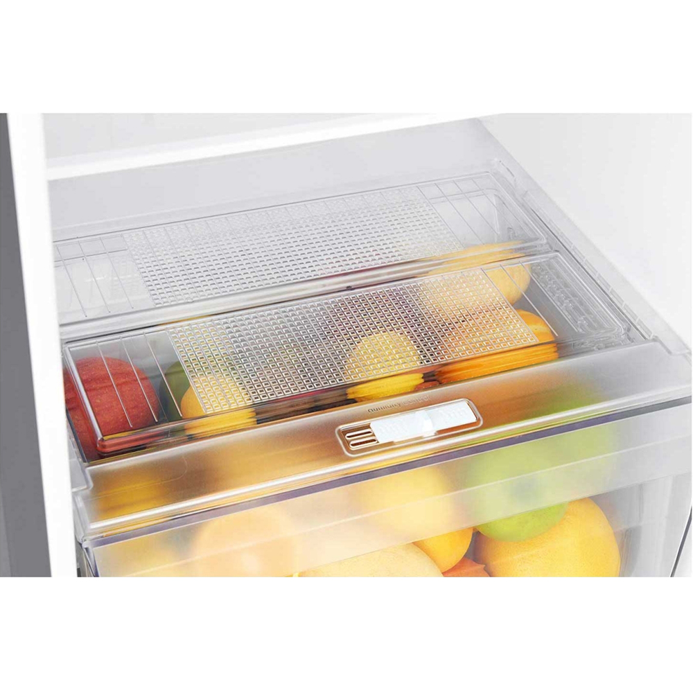 ตู้เย็น LG 2 ประตู 9.2 คิว